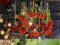 philadelphia-flower-show-2017-3-c