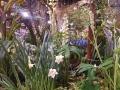 philadelphia-flower-show-2017-garden-design-c