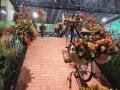 philadelphia-flower-show-container-garden-2-c