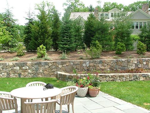 backyard habitat the captured garden