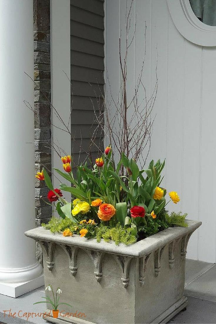 orange-container-garden