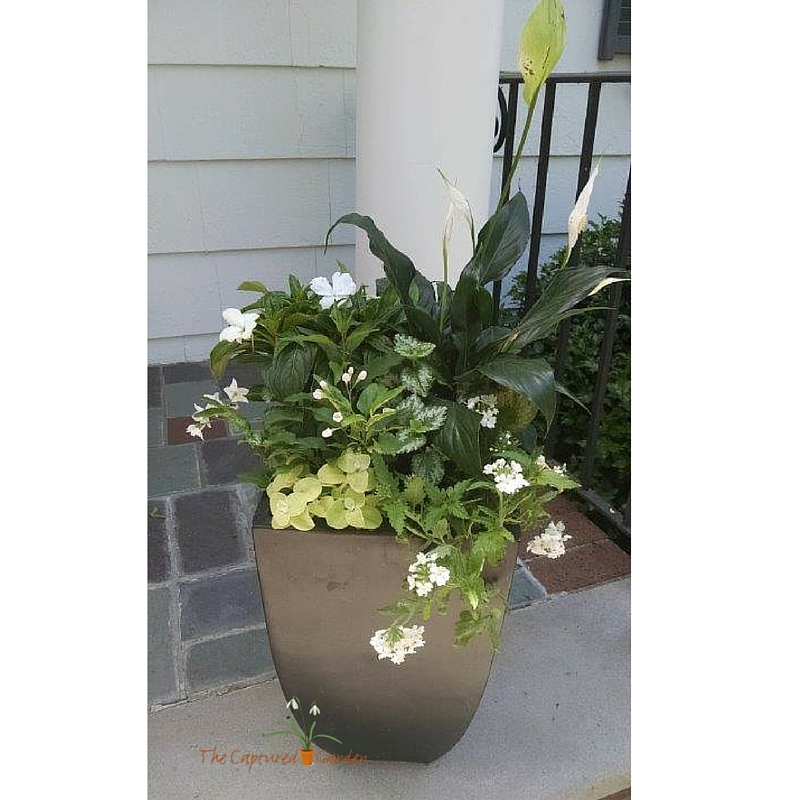 customized container garden design