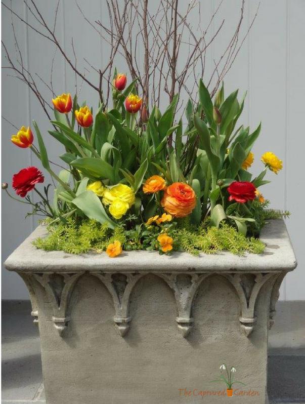 stone planter - container garden