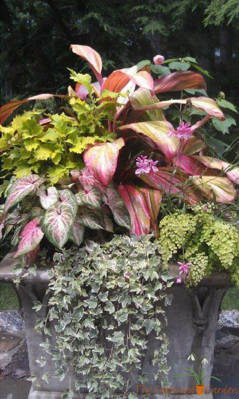 stone planter, container garden
