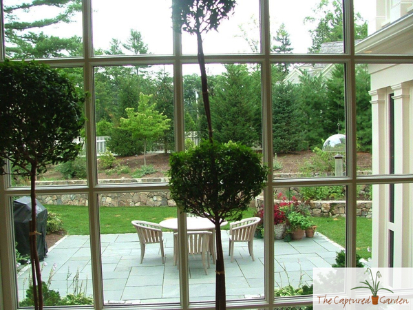 garden design from the inside out