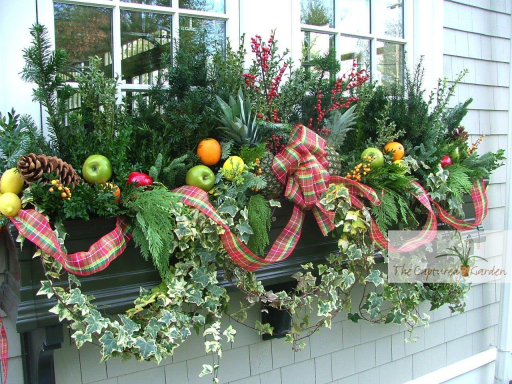 windowbox container gardens - seasonal