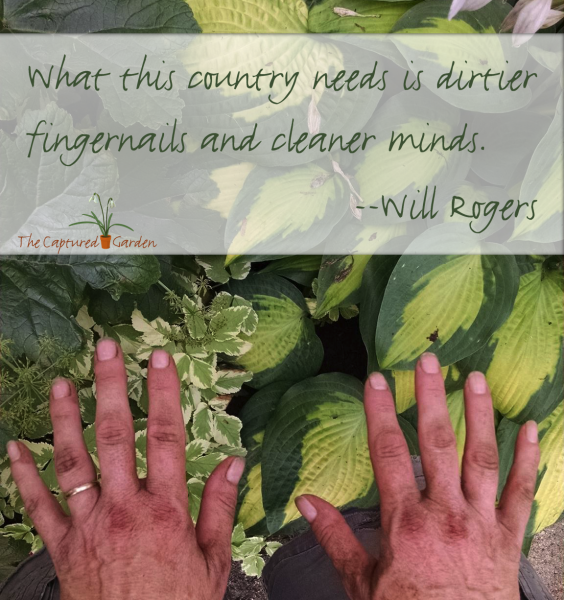 garden-quote-dirtier-fingers-cleaner-mind-rogers