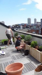 Boston Rooftop Garden - filling the planter boxes