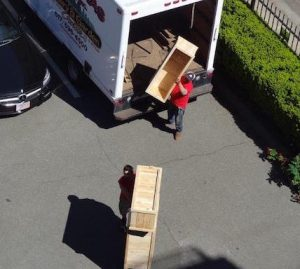 Boston Rooftop Garden planter boxes delivery