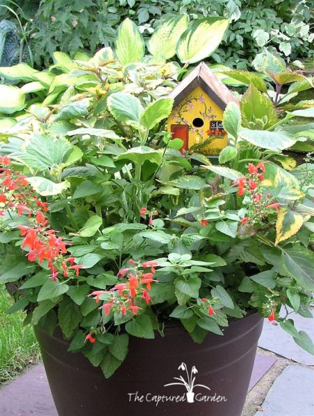 container garden design accessories