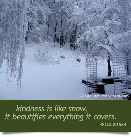 snowy garden quote - kahlil gibran