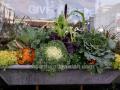 fall-windowbox-with-cabbage-sedum-pumpkins