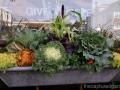 Fall container sedum cabbage millet pansies galvanized metal