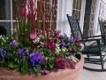commercial-planter-spring-pansy-tulip-pink-purple