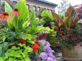 tropical-container-garden-canna-echinacea-hot-colors