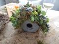 Succulent Birdhouse - Workshop
