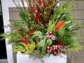 contemporary-winter-planter-dogwood-greens-rose-hips