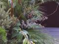 sleek-winter-planter-texture-greens-leucothoe-pine-eucalyptus