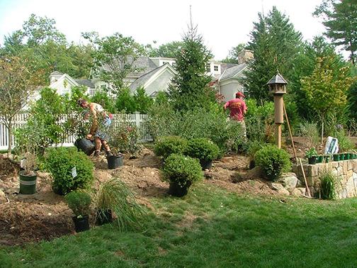 Backyard Habitat @ The Captured Garden