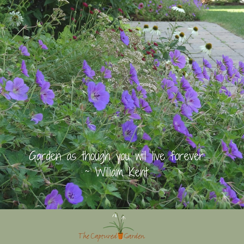 Garden as though you will live forever - William Kent