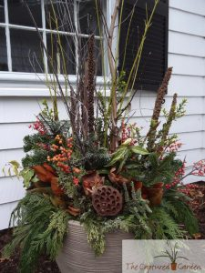 winter container gardens pots greens