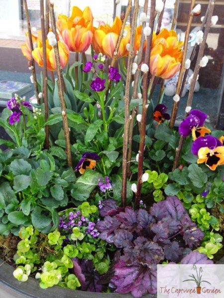 first-colors-spring-container-garden-design-ideas