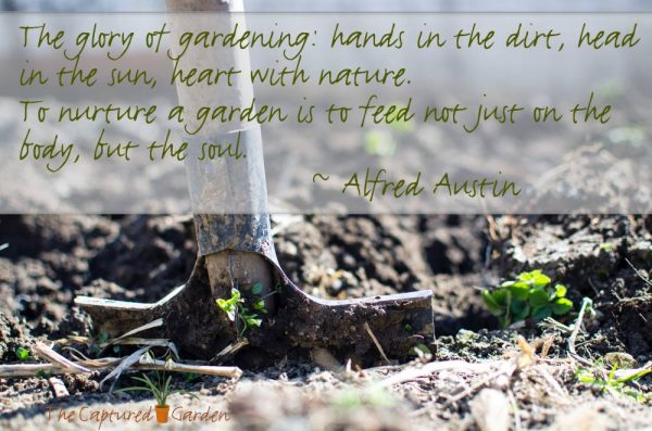 glory of gardening - quote