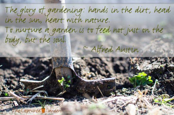glory of gardening - quote