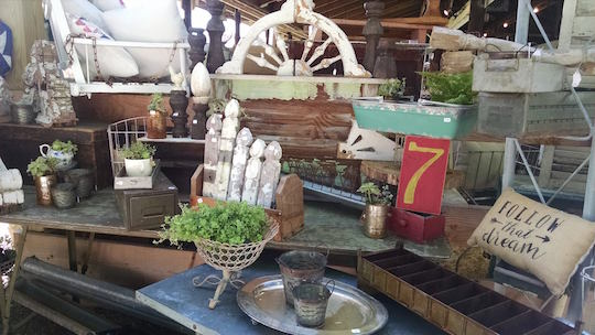 Country Living Fair, Rhinebeck, 2017