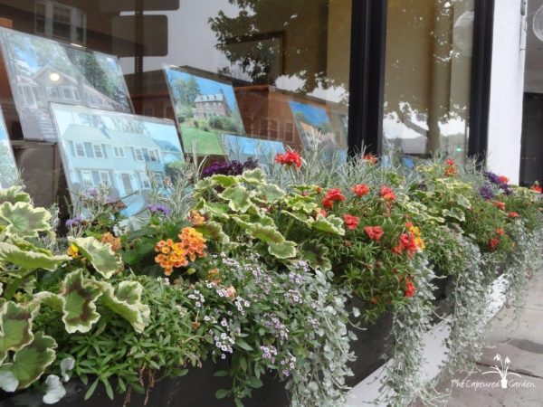 window-box-container-garden-design
