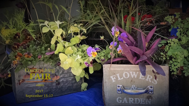professional-container-garden-presentation-country-living-fair-ohio