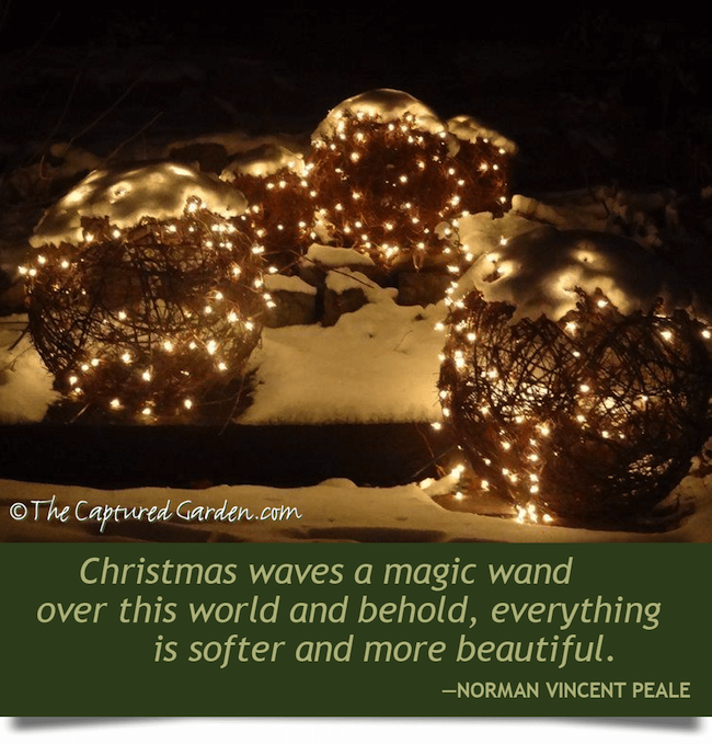 christmas magic garden quote