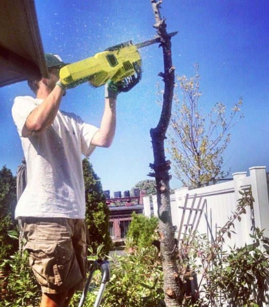 chainsaw for garden design services