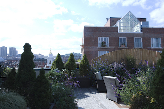 roof deck garden design