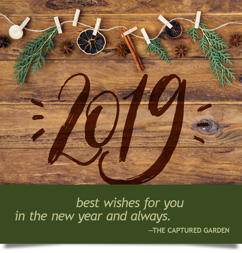 container garden new year wishes