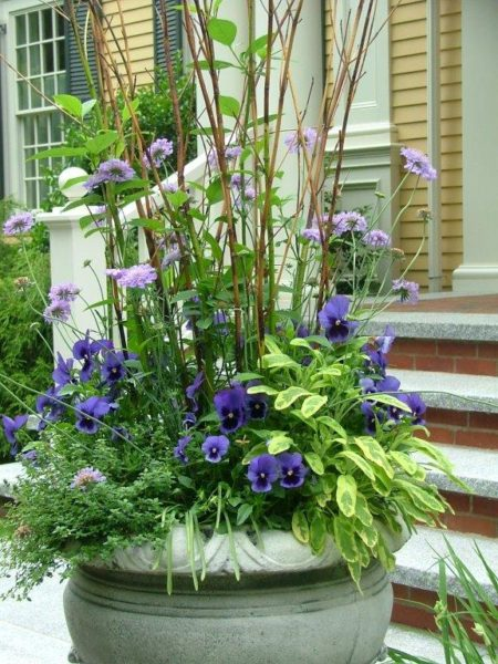 captured garden container garden options herbs
